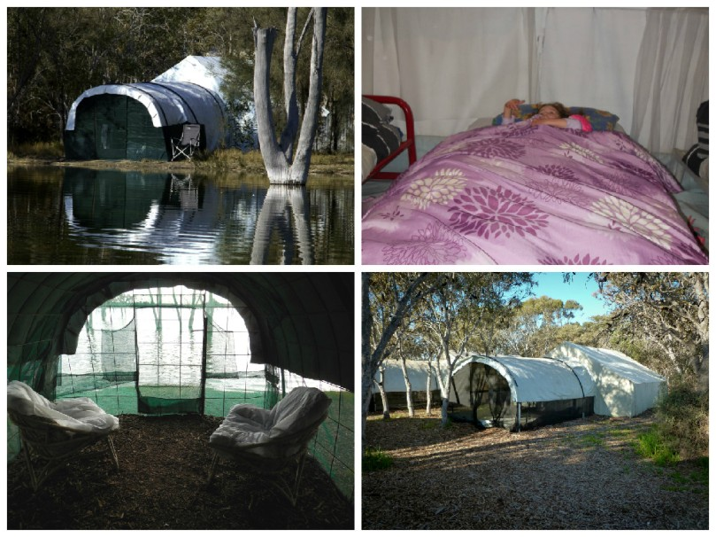 Boshack tents