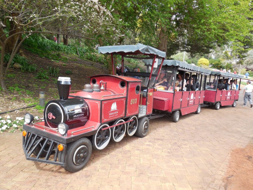 Train at Araluen