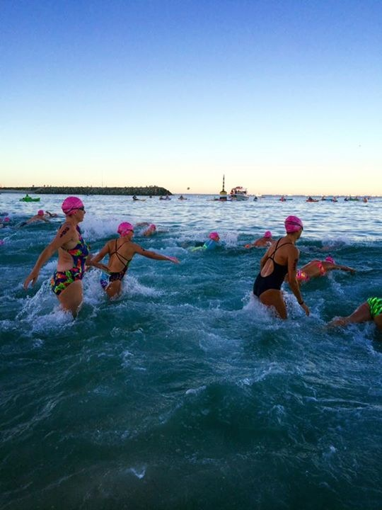 In the water at Swim to Rotto