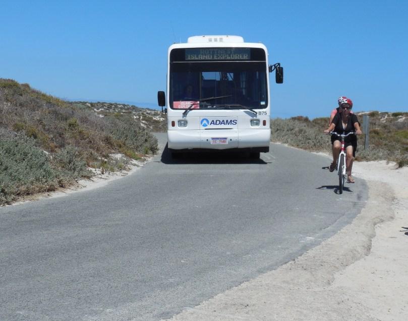Bus at Rotto.JPG