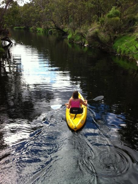 Kayak Blackwood river