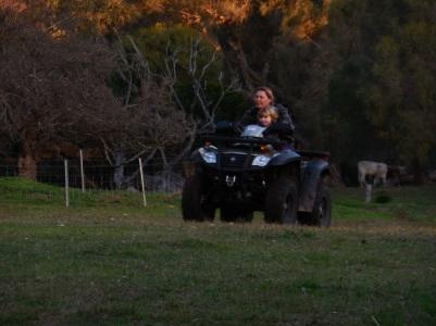 Willow Brook Farm 037