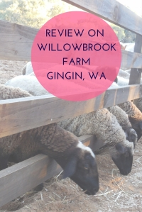 willowbroom farm review