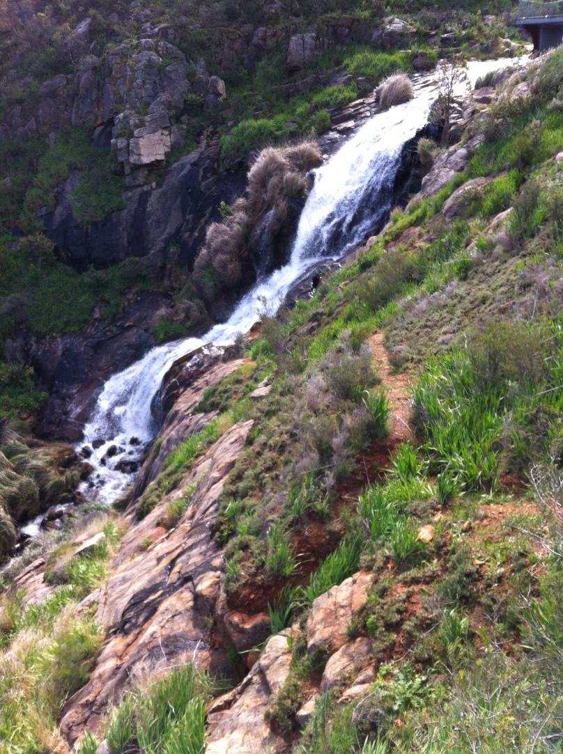 Lesmurdie Falls.JPG