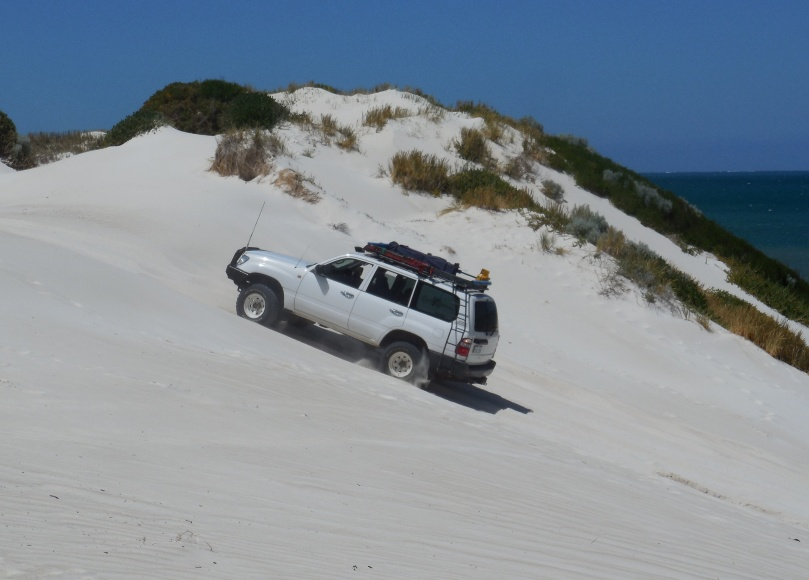 Ledge Point Sand Dune.jpg