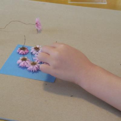 sunprint-flowers