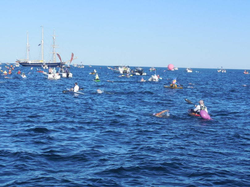 swim-to-rotto-leeuwin