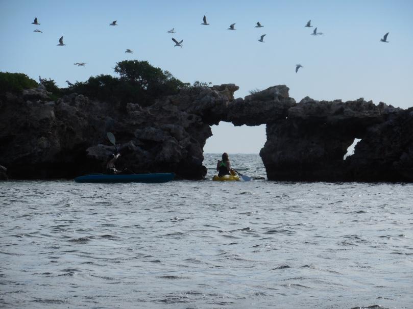Milligan Island.JPG