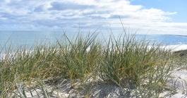 Whitfords Beach