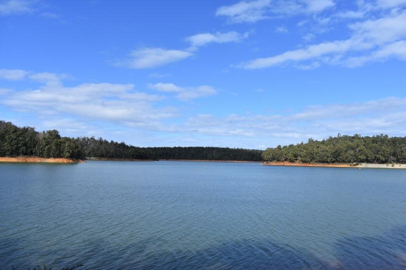 Lake Navarino Waroona Dam.jpg