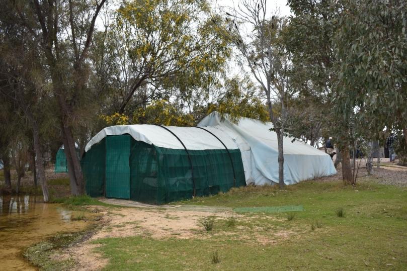 Boshack Outback Glamper.jpg
