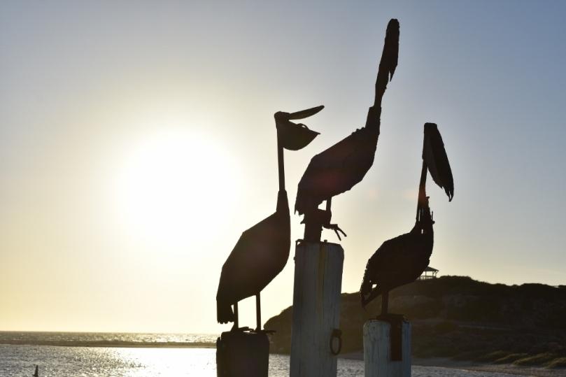 Guilderton Pelican Art.jpg