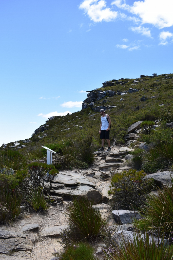 Bluff Knoll walk