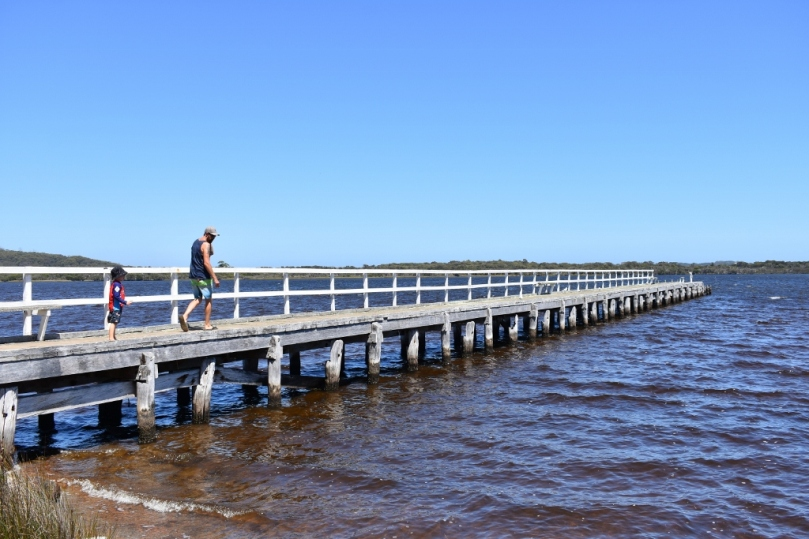 Jetty at Walpole.jpg