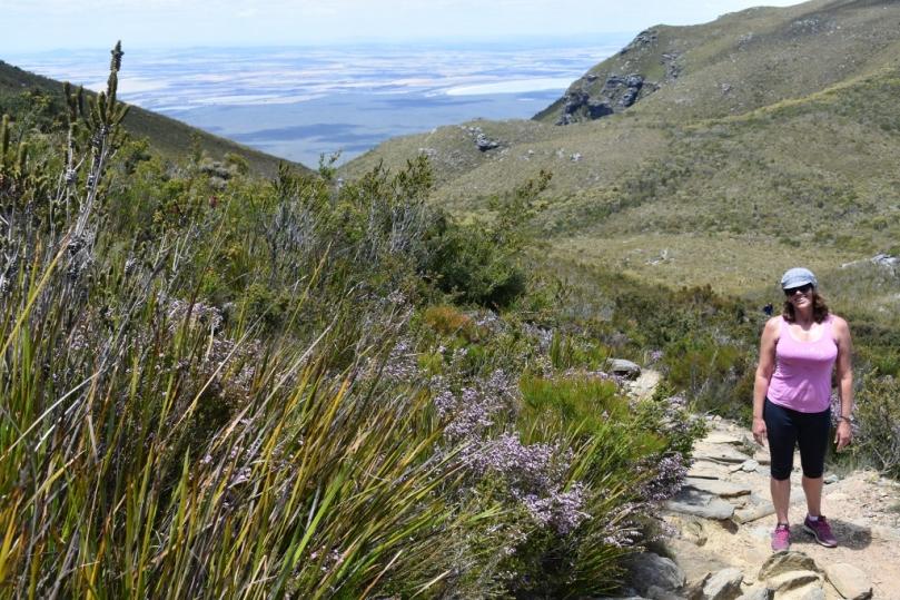Trail Bluff Knoll