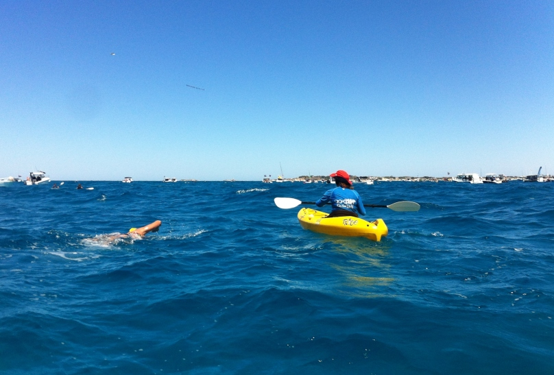 Rottnest Channel Swim.JPG