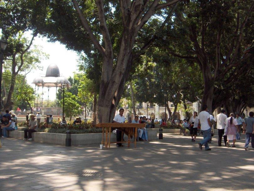 Zócalo-Oaxaca-Mayo2008