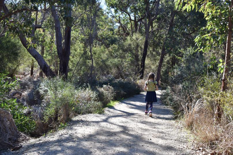 Paths at Lesmurdie Falls