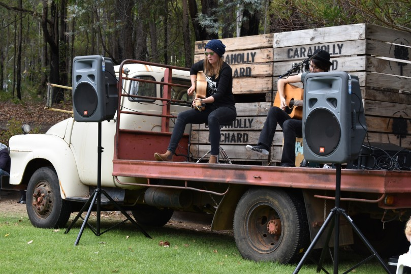 Music at Dwellingup Pumpkin Festival