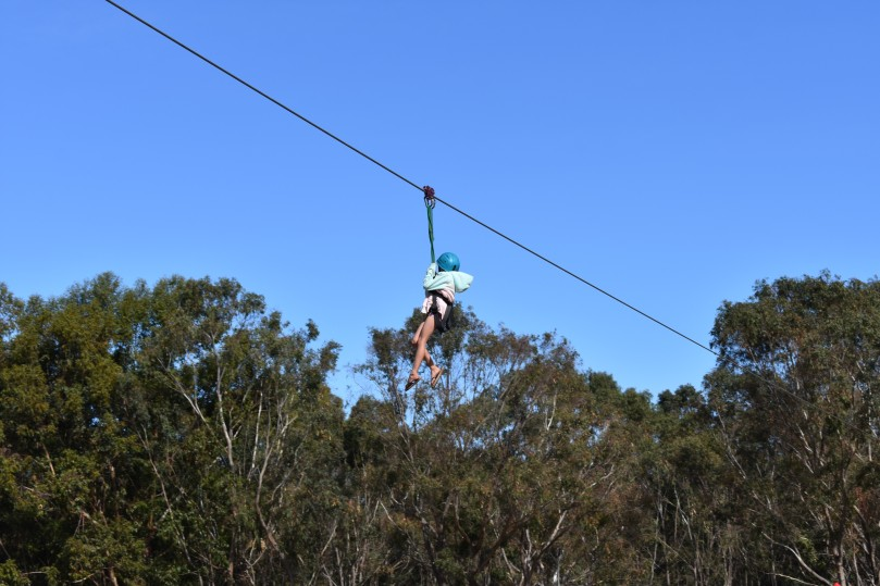 Flying Fox at Ring of Fire Campout