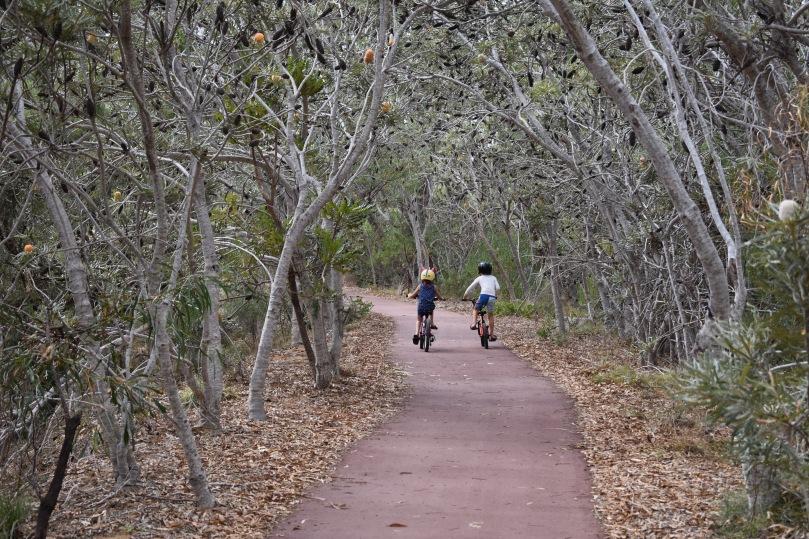 cycling-craigie-bushland