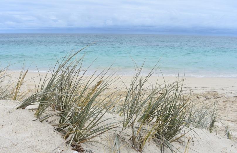 wa-beach